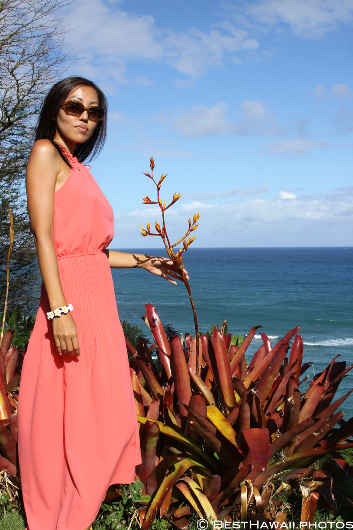 Diamond Head Waikiki Beach by BestHawaii.photos Tour Honolulu 2015_07142015_6353